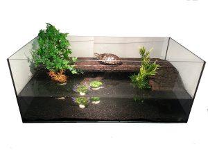 Aquaterrarien sind kostspielig