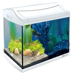 tetra aquaart discovery line led aquarium komplett set 20 liter weiss inklusive