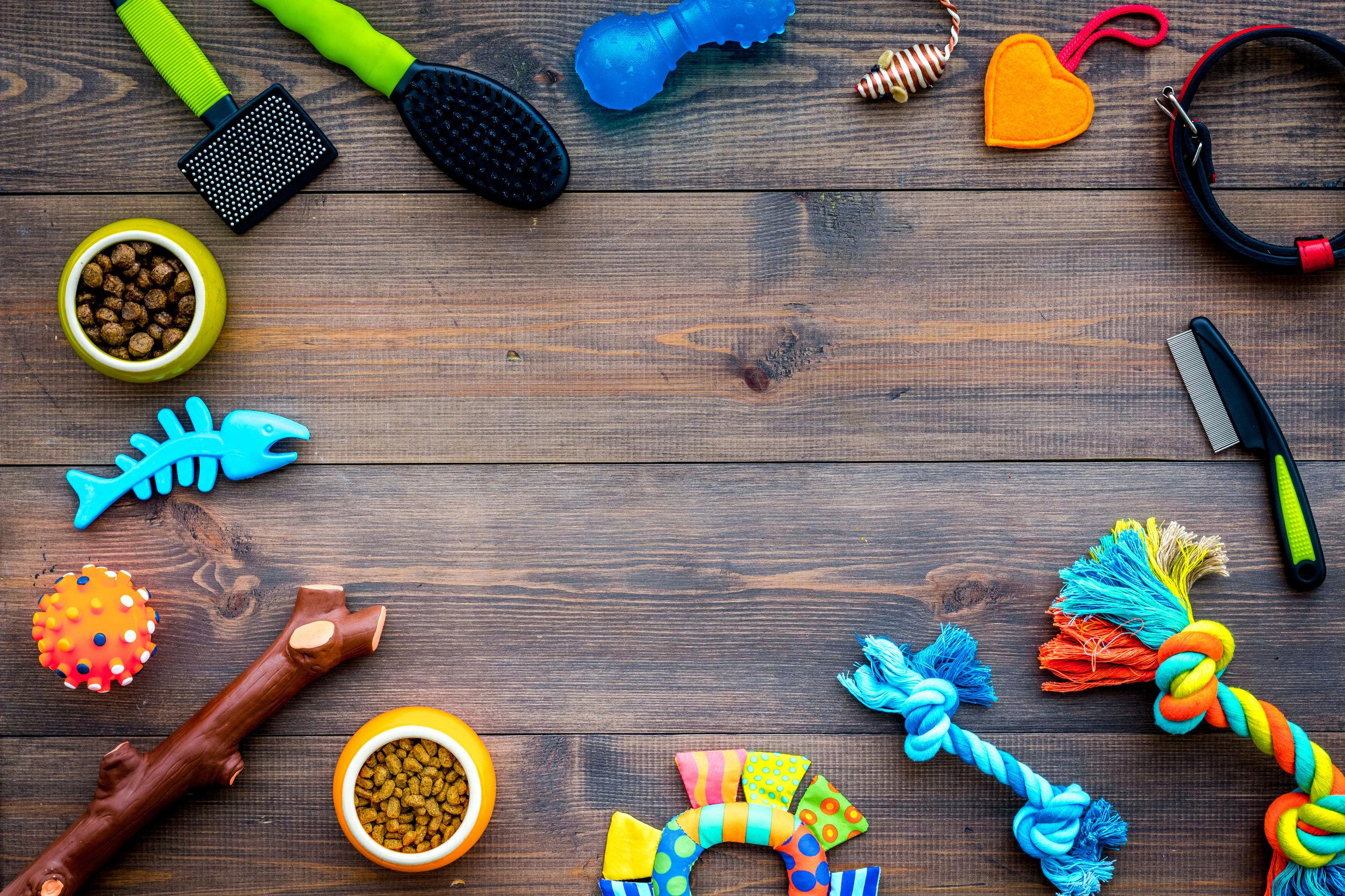 Intelligenzspielzeug für Hunde: Test & Empfehlungen (01/20)