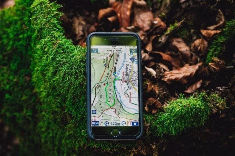 GPS für Hunde-3