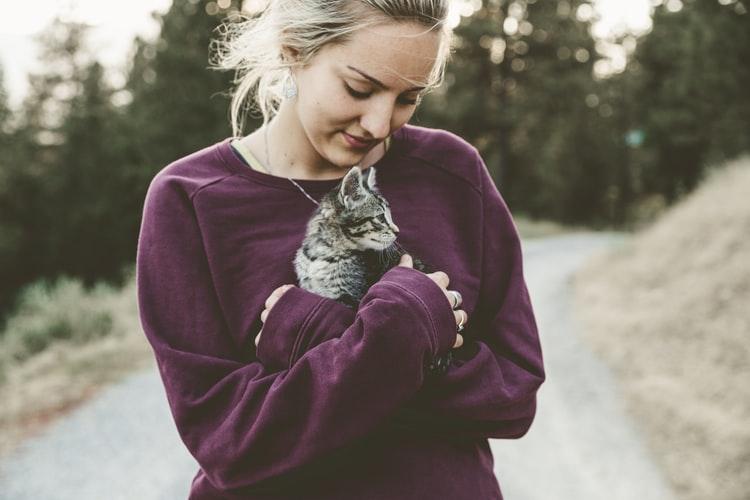 Katzengeschirr-4