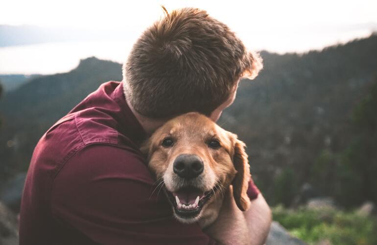 Das Bild zeigt einen Hund mit seinem Besitzer beim Wandern. Der Besitzer umarmt den Hund.