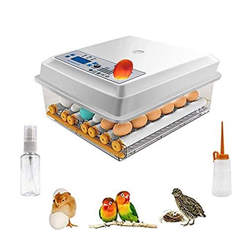 Kacsoo Eierbrutschrank Inkubator, Vollautomatische Brutmaschine 16-Eier-Brutapparat mit LCD-Display, Kleine Geflügelluken Temperatur- und Feuchtigkeitskontrolle für Hühner, Enten und Gänse zu Hause