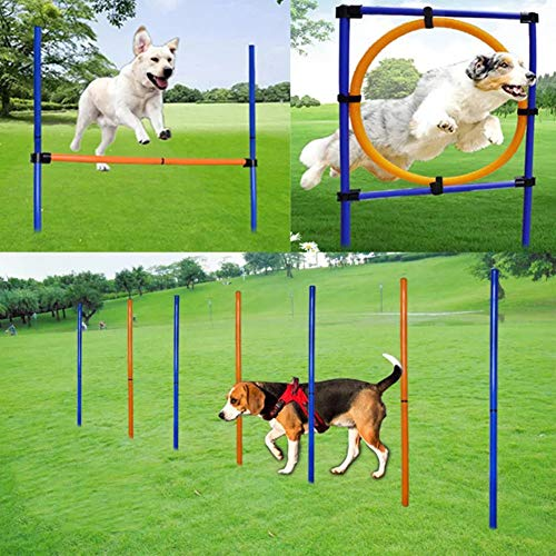 MelkTemn Dog Agility Set, Profi Hundetrainigsset Agility 3 Übungen Hund für Agility - Hundetraining,Hund Agility Slalom Tunnel Übung-orange/blau