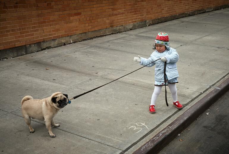 Kind mit einem Hund an der Leine
