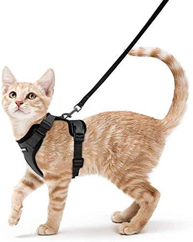 rabbitgoo Katzengeschirr mit Leine Schwarz Softgeschirr für Katze Brustgeschirr Cat Harness Katzengarnitur ausbruchsicher verstellbar Katzenweste S