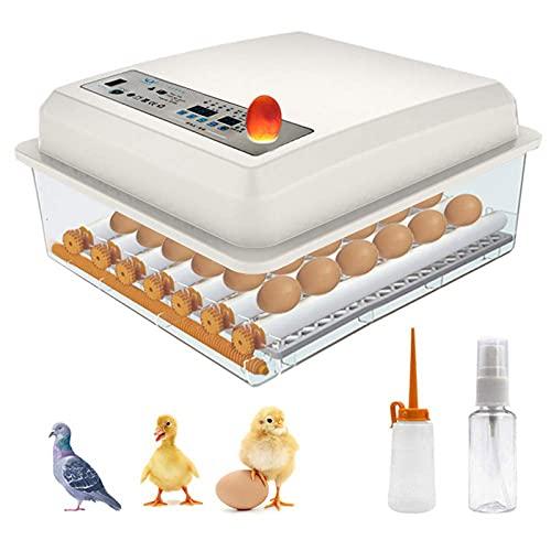 KKTECT Brutmaschine Vollautomatisch Hühner Eier Brutgerät -36 Eier - Automatischer Turner - Temperaturregelung, Eierinkubatoren zum Schlüpfen von Eiern der Hühnergans Ente Taube Wachtel Vogel …