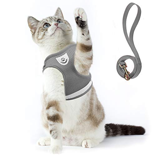 Supet Katzengeschirr Geschirr für Katzen Welpengeschirr Weich Kaninchengarnitur Katzen Weste mit Leine für Kitten Hunde Chihuahua… (S für Normale Katzen(Brustumfang: 24-30 cm), Grau)